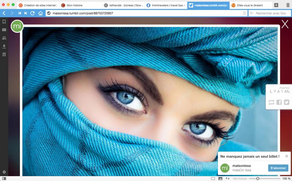 Le navigateur Internet Vivaldi pour GNU / Linux, Mac OS X et Windows