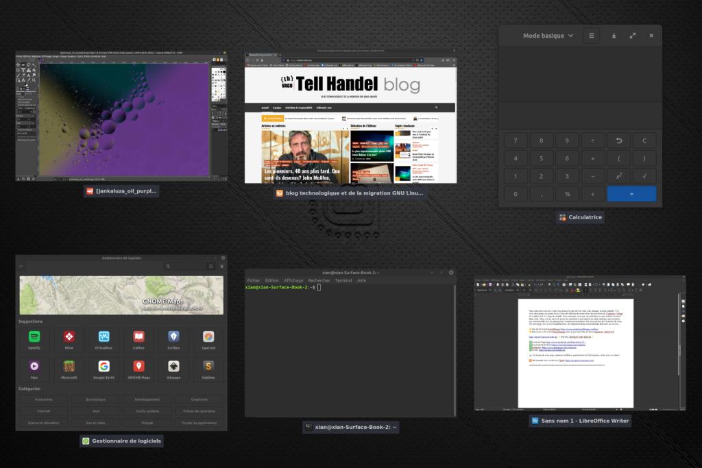Linux Mint en mode de vue multi-tâches